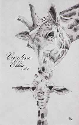 Graphite Giraffes