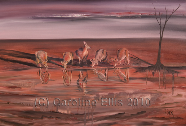 Waterhole kangaroos