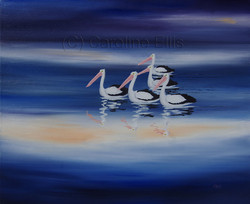 Storm Blue Pelicans