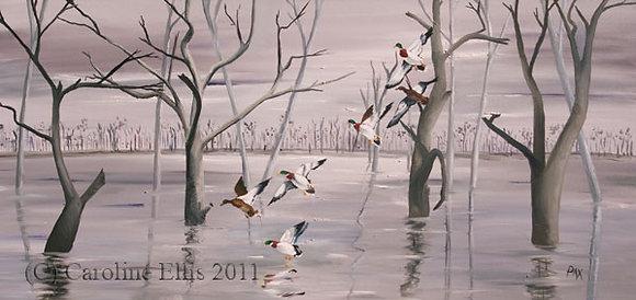 Mallards on the Marsh