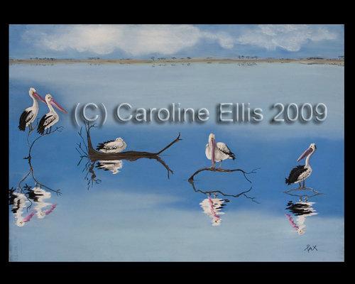 Kangaroo Lake Pelicans