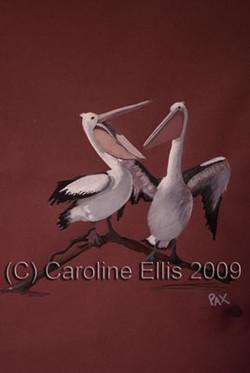 pelican-duo