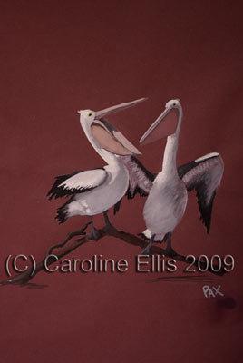 Pelican Tiff