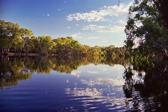 Murray River: Australia