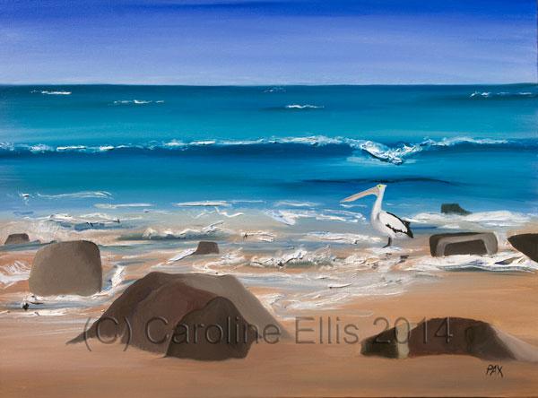 pelican-on-beach