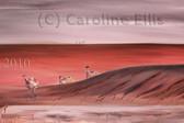 emu-waterhole A66.jpg
