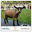 MC-WS 200px_2018 Yoga with Goats banner6