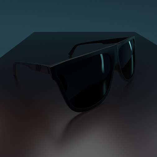 Project 44 - Sunglasses.jpg