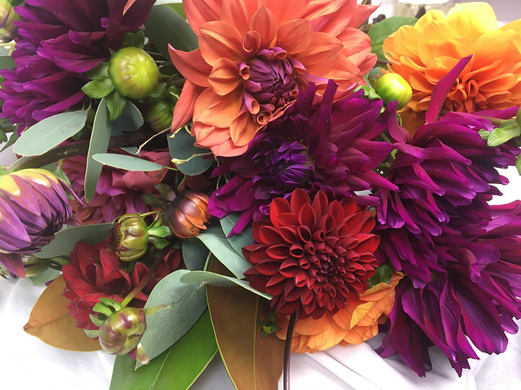 Dahlias (20 stems, Dutch origin)