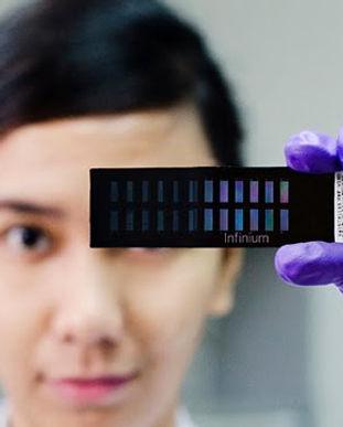 Infinium Genotyping GSL IRRI.jpg