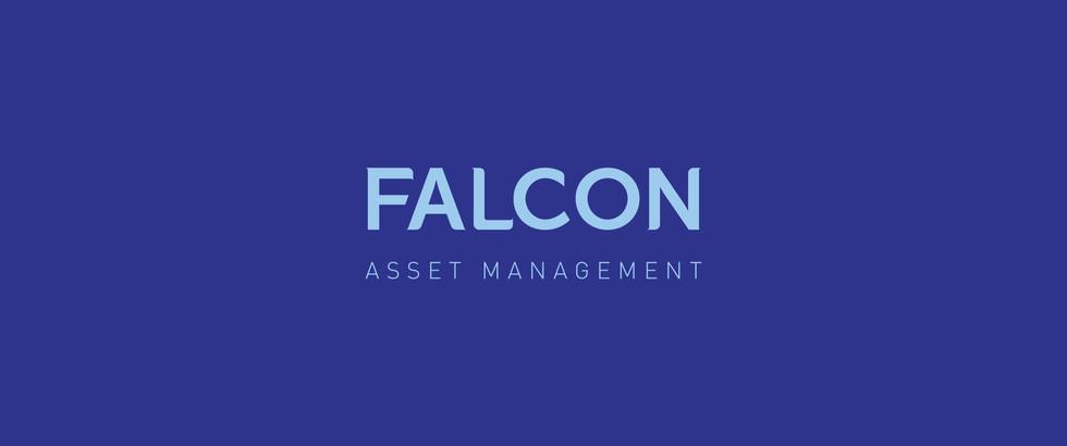 falcon-02.jpg