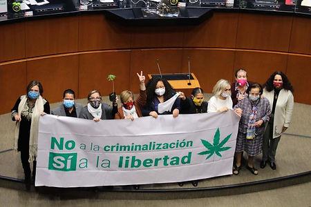 Legalización de Marihuana en México.jpg