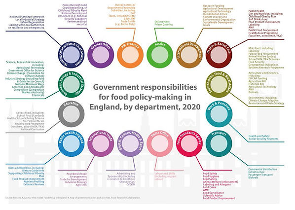 Parsons 2020 _FRC_Who makes food policy