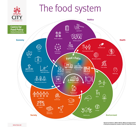 The Food System_Parsons Hawkes and Wells