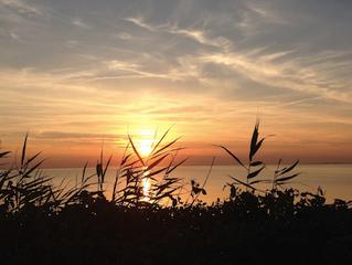 Lad sommerens bilkøer, solnedgange og tidlige morgener inspirere til ro og nærvær.