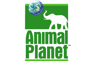 Brand-New-New-Logo-for-Animal-Planet-by-