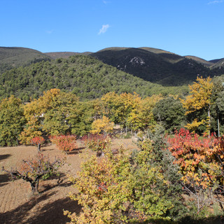 The automn colours of the Luberon from your Provence escape, La Jassine