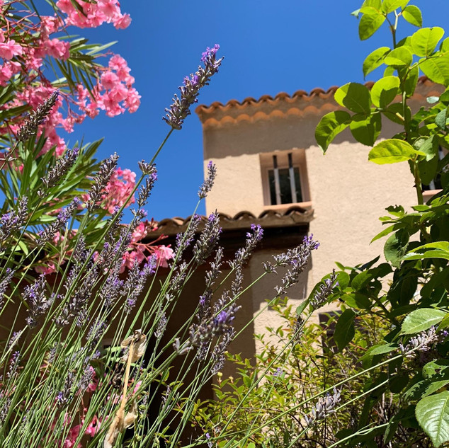 Lavender and oleander at your Provence escape, La Jassine, in the Luberon