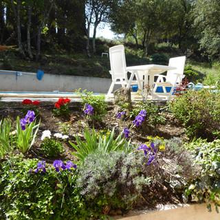 Beautiful colours and scents of Provençal garden at La Jassine