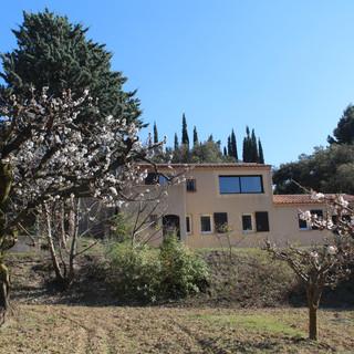 Cherry season at your Provence escape, La Jassine