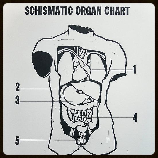 Schismatic Organ Chart