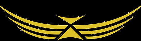 Website yellow Logo.png