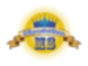 MS Circle_NB1.png