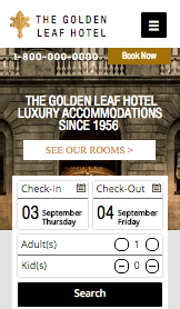 Hotels website templates –  Luxueus stadshotel