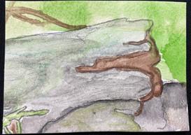 The Log by Trishta Blizzard