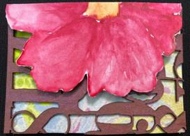 Flower & Romance by Trishta Blizzard
