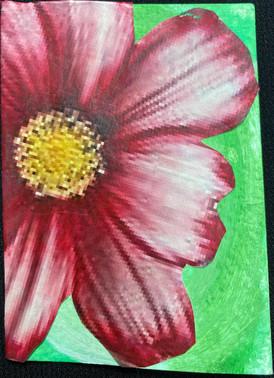 Flower #1 by Jamie Ramos