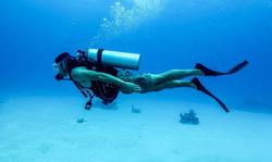 Diving on Panglao