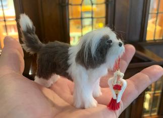 Christmas 2019 at Nybelwyck Hall