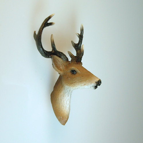 Deer Trophy Head