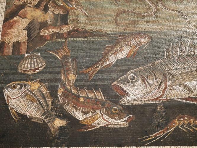 National Archaelogical Museum Naples 3.j