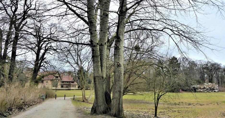 Cecilienhof 2.jpg