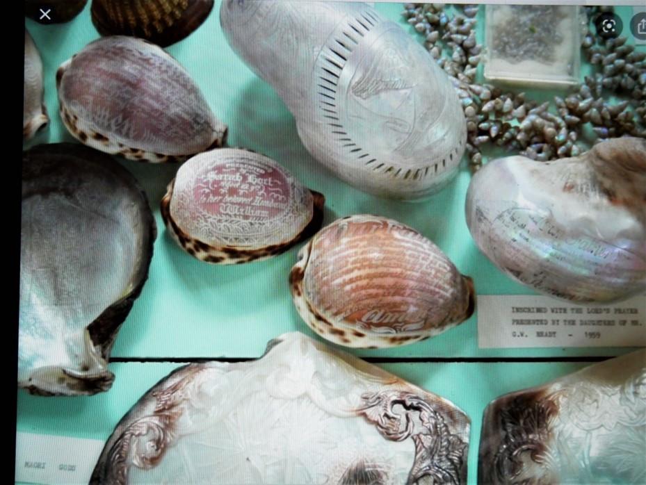 Shell Museum, Norfolk 3.jpg