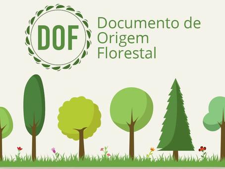 Documento de Origem Florestal (DOF)