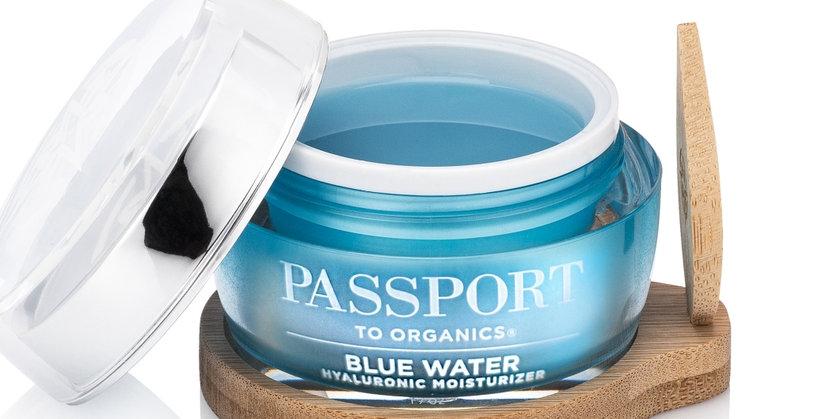 Passport to Organics Blue Water Moisturizer