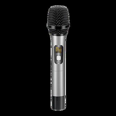 mic30.png