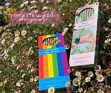 Paper Straw Group.jpg