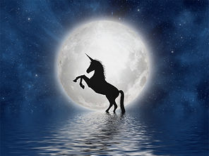 unicorn-3909694_1920.jpg