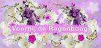 orchids-862899_nieuwsflits (1).jpg