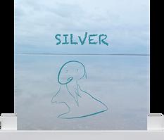 Silver-cover-op-plankje.png