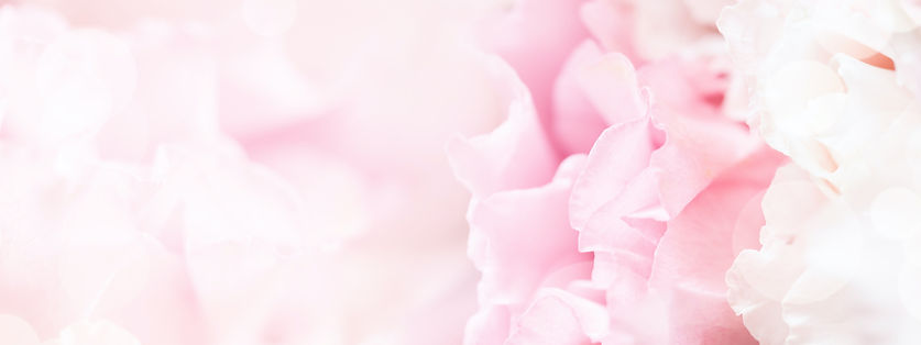soft-focus-banner-with-pink-flowers-H6TE