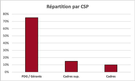 Répartition par CSP.png
