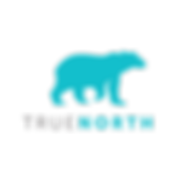 True North Logo - polarbear on iceberg [
