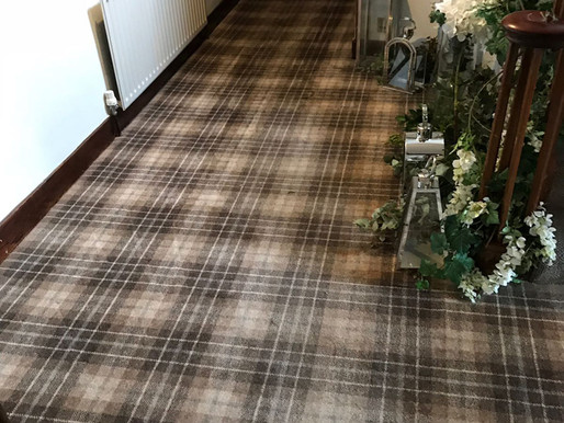 Now's the Time to Get Your Commercial Carpets Cleaned