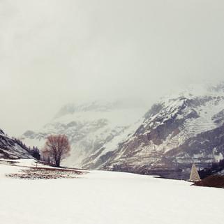 Paysage de montagne enneigé dans la brume
