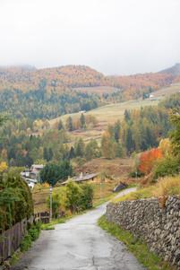 Couleurs d'automne dans ce paysage de montagne